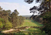 Best Golfs 2016
