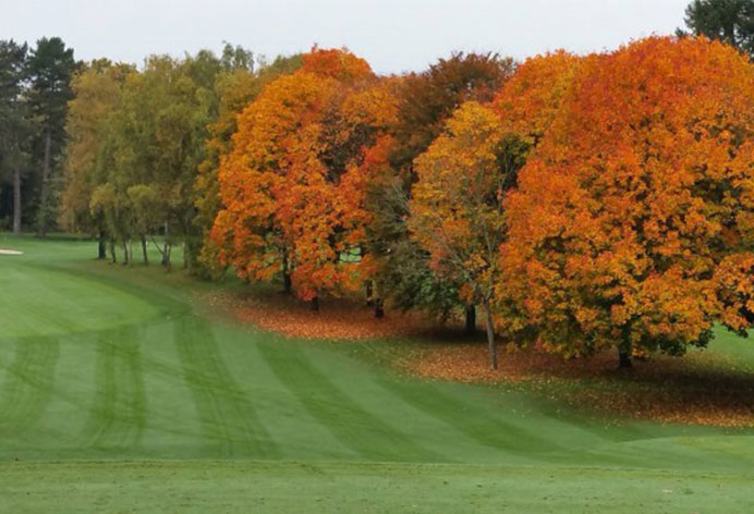 Start up Golf Challenge