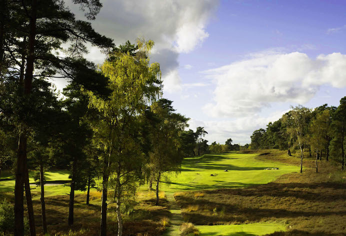 Best Golfs 2019